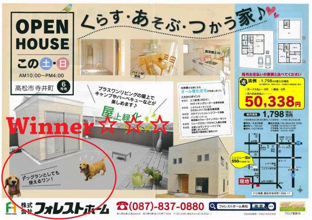 寺井町団地広告