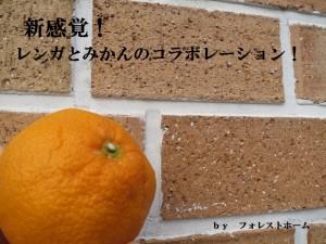 IMG_0727bs