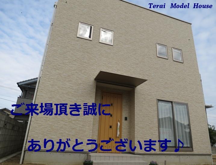 IMG_0740bs